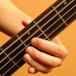 Learn how to play Bass Guitar Premium Cracked
