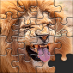 Puzzles for Adults no internet MOD Unlimited Money